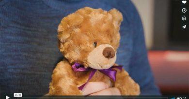 Teddybär Polizei