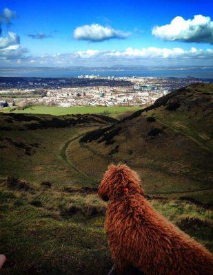 Blick von von Edinburgh nach Kirkcaldy