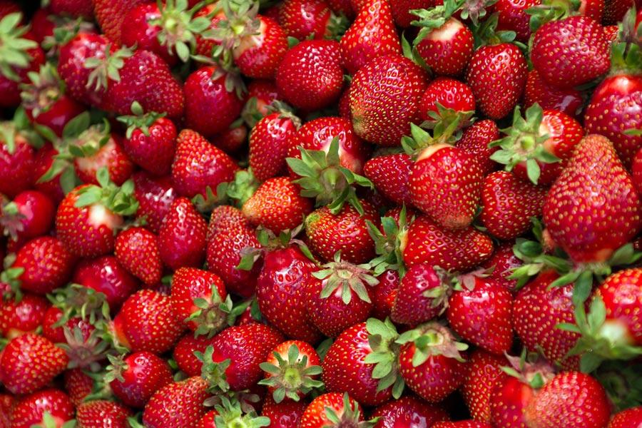 Erdbeeren, Markt in Oulu