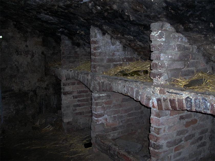 Gewölbe im Untergrund von Edinburgh