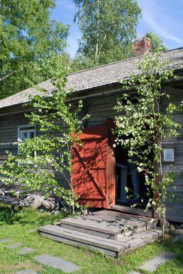 Hauseingang geschmückt mit Birken