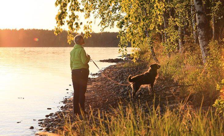 Finnland Reisen mit Hund Checkliste