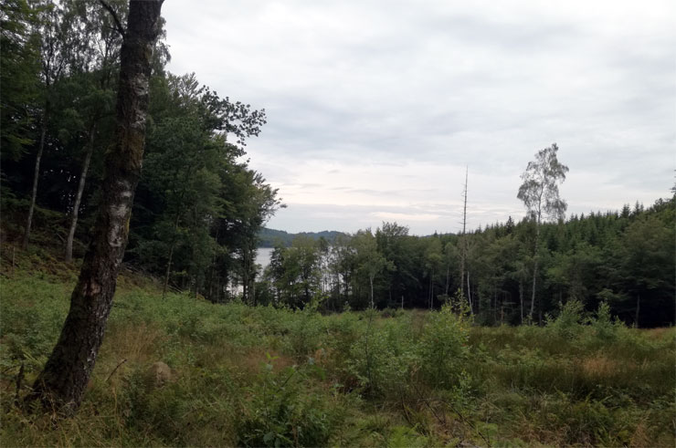 Ottersjön bei Schaffarm Öströö