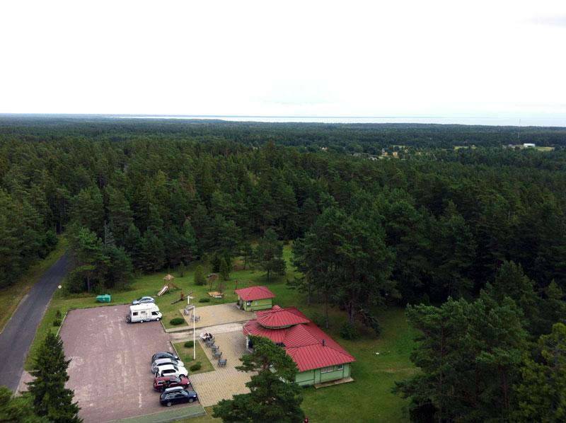 Hiiumaa wird zu über 60 Prozent von Wald bedeckt