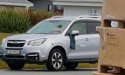 Protest in Island: Waghen mit Scheiße beschmiert