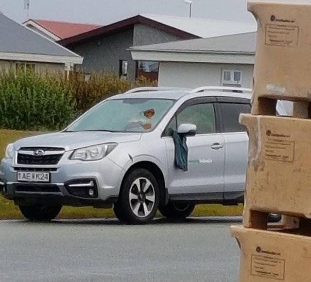 In Island ist die Kacke am Dampfen