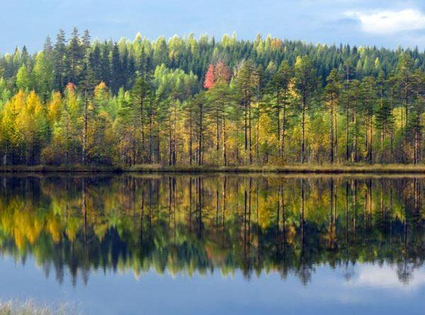Ruska, finnischer Herbst