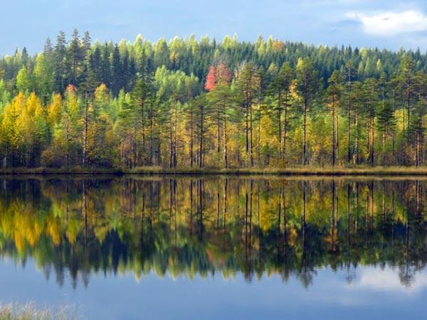 Ruska: Der finnische Herbst im Rausch der Farben