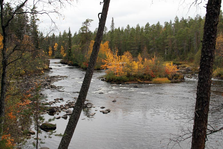 Oulanoki im Nordosten Finnlands