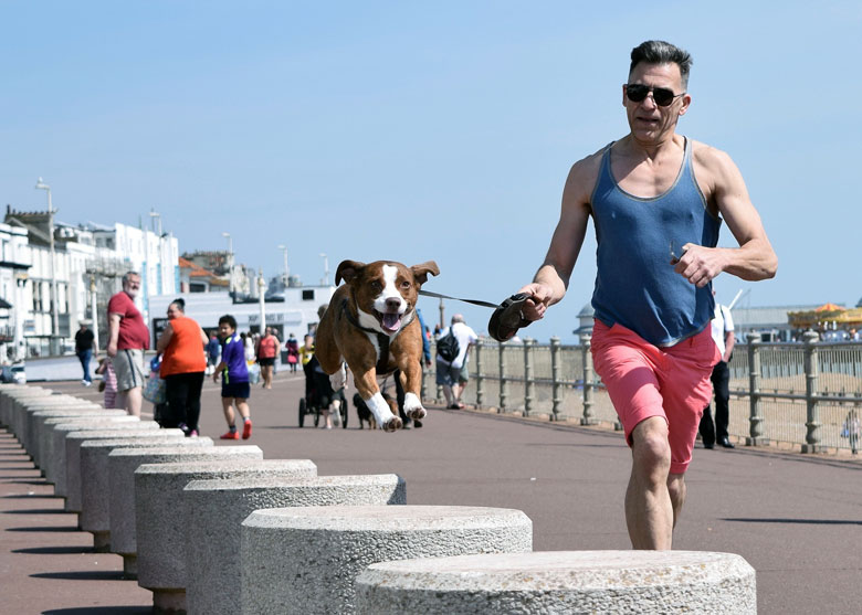 Hastings, hundefreundliche Stadt