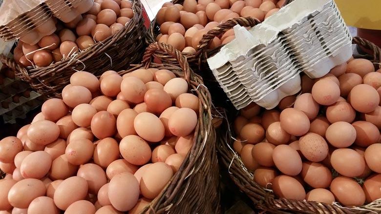 15.000 Eier für norwegische Olympiamannschaft