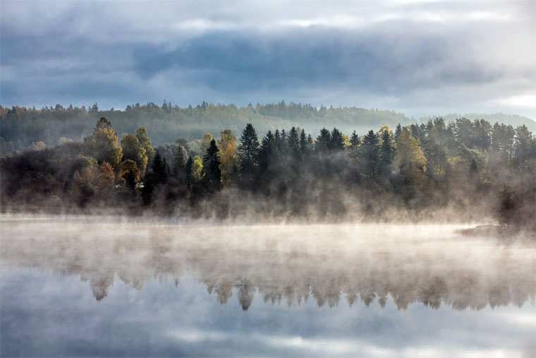 Nebel über See und Wald