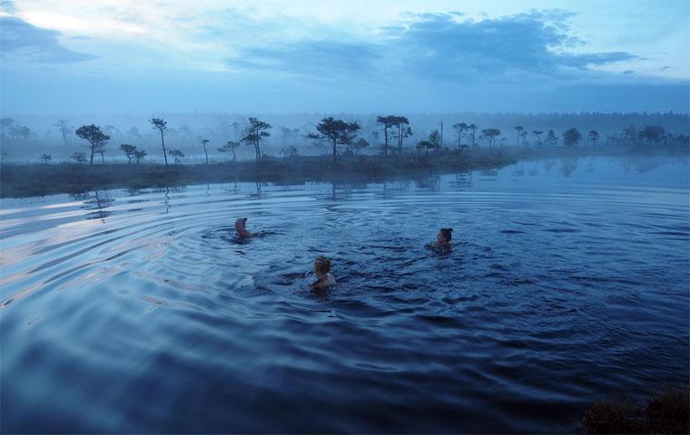 Schwimmen im Moor