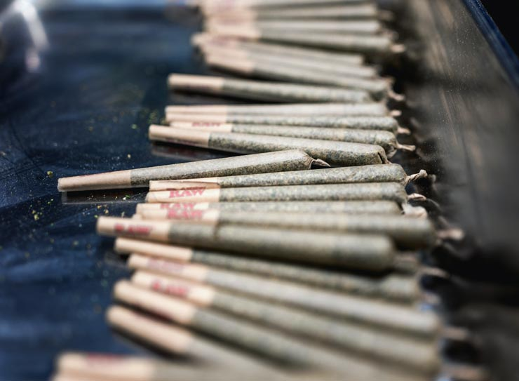 Cannabis Legalisierung Dänemark