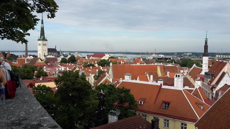Ausblick Tallinn Reisebericht