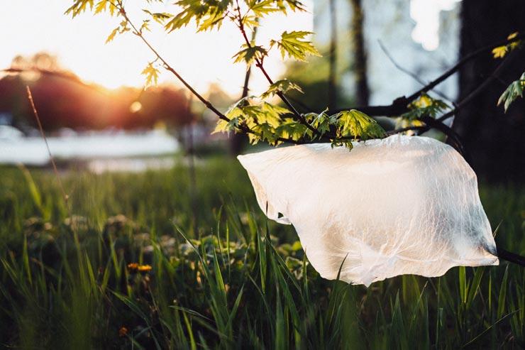 Plastiktüten Umwelt