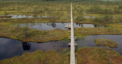 Endla Naturschutzgebiet