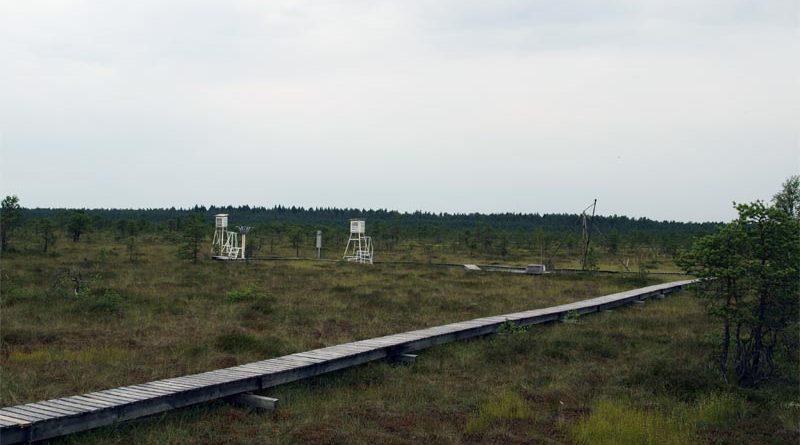 Messstation Endla