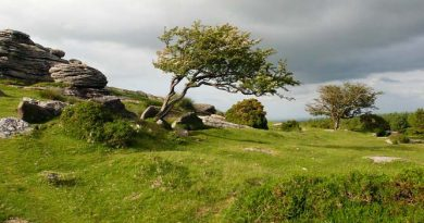 Dartmoor Nationalpark Wandern