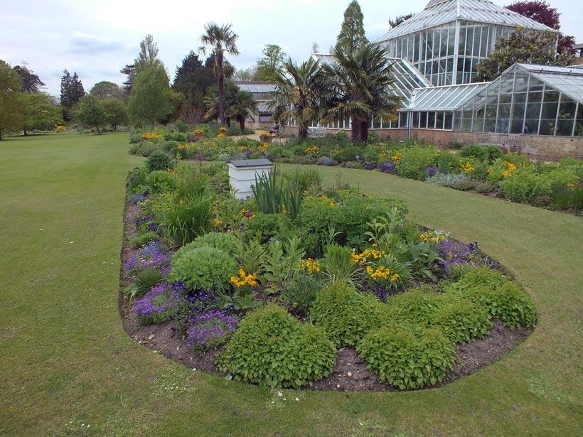 Botanischer Garten Cambridge