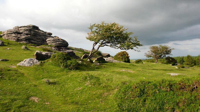 Dartmoor Nationalpark England