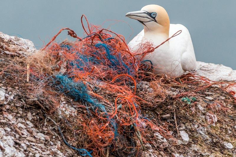 Plastikmüll Färöer Inseln