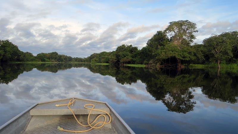 Norwegen Brasilien Amazonas
