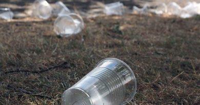Plastikgeschirr Tallinn Verbot
