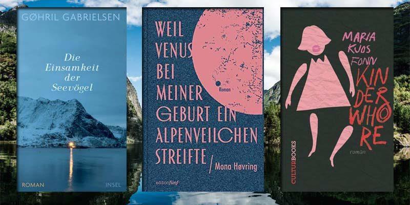 Bücher Romane aus Norwegen