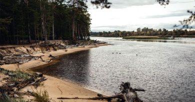 Gauja Flusslandschaft