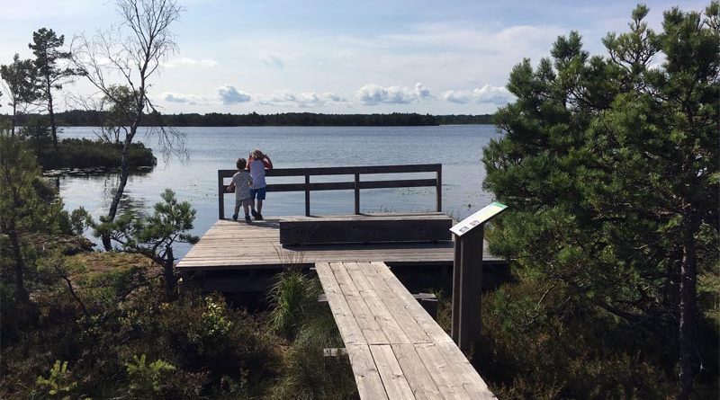 Wandern Moor Koigi Saaremaa