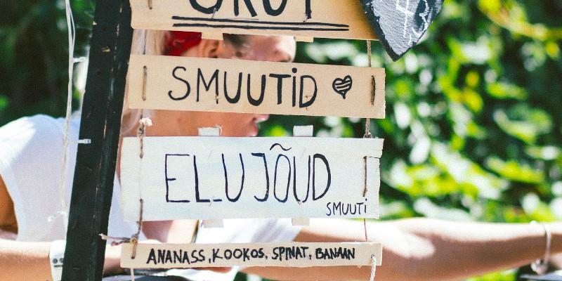 sprachfuehrer estnisch