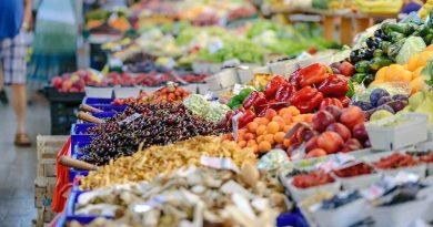 Dänemark Bio Lebensmittel