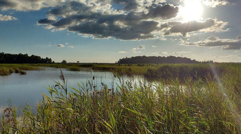 natur lettland