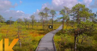 Wandern digital Estland