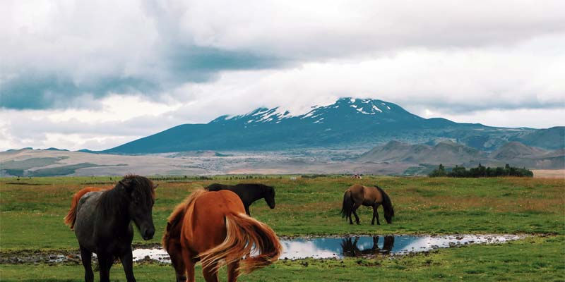 Hekla Vulkan Island
