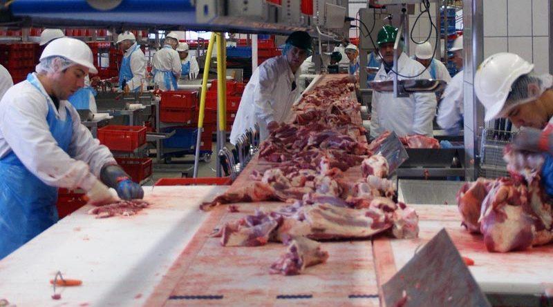 Fleischverarbeitung Corona