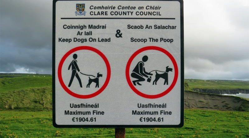 Irische Sprache