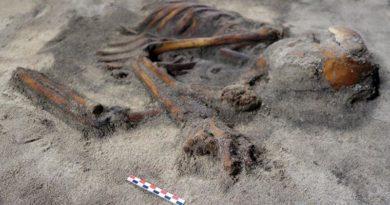 Lofoten Skelett Eisenzeit