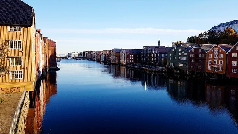 Trondheim Coronavirus-Mutation