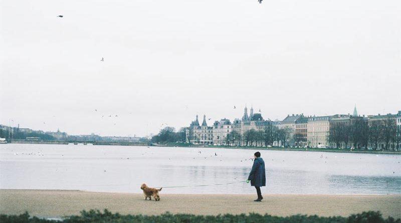 Søerne Kopenhagen