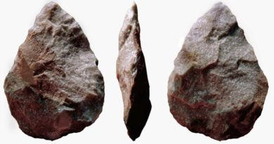 Steinwerkzeuge Benutzung