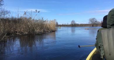 Aktueller Erfahrungsbericht aus Estland: Kanu-Tour im Soomaa Nationalpark (Bildergalerie)