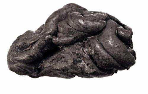Prähistorischer Kaugummi Dänemark