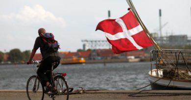 Staatsbürgerschaft Dänemark