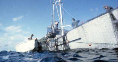 Fischereiabkommen Großbritannien Norwegen