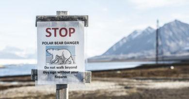 warnung eisbaer spitzbergen