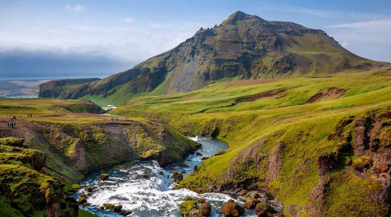 wald island aufforstung
